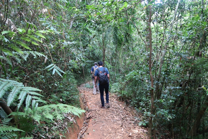 蜜月二部曲-【馬達加斯加】6天6夜,不思議的生態地質人文之旅 〈DAY 3〉